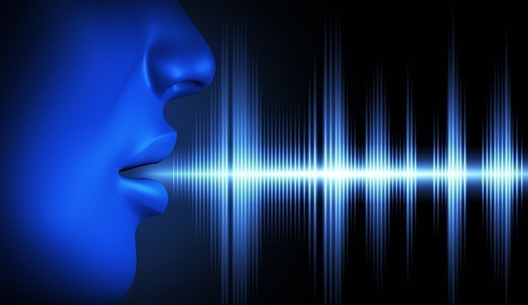 Voice Recongnition